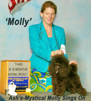 'Molly'...CH. Ash's-Mystical Molly Sings On