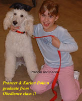 Prancer & Karina Bolton graduate from Obedience class!!
