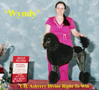 'Wyndy'.....Intl CH. Ashvery Divine Right To Win..