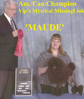 Maude. Am./Can. Champion Vip's Mystical Missing Link.... now owned by Sue Jones