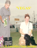 Vegas. CH. Laurelbury Vegas Showgirl.   **now owned by Margaret Filson