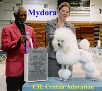CH. Cratan Adoration    'Mydora' ... owned by Beverly Merr